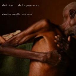 Toub: darfur pogrommen